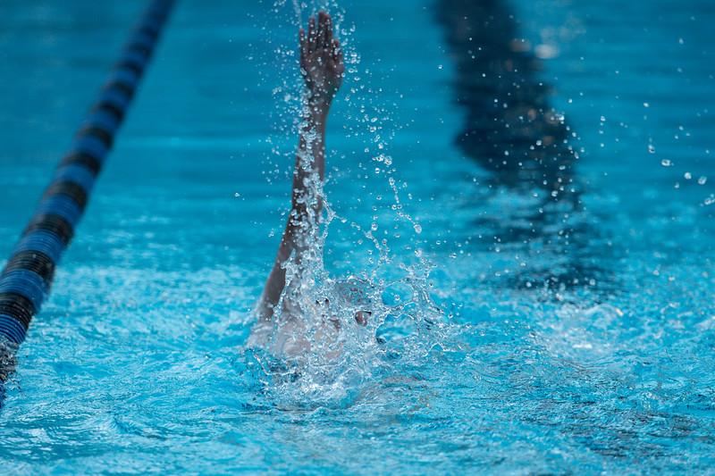 lcs_swimming_kevkramerphoto-539.jpg