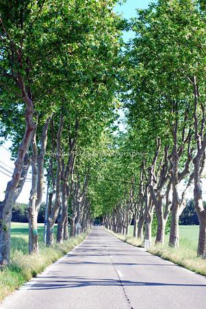 Aix-en-Provence 2009
