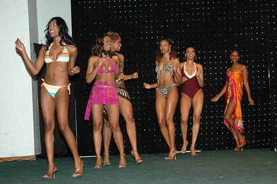 Ebony Fashion Fair Dec 7, 2005