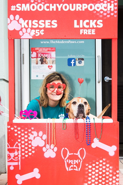 vets4pets_tampa_smooch_pooch_stephaniellen_photography-37.jpg