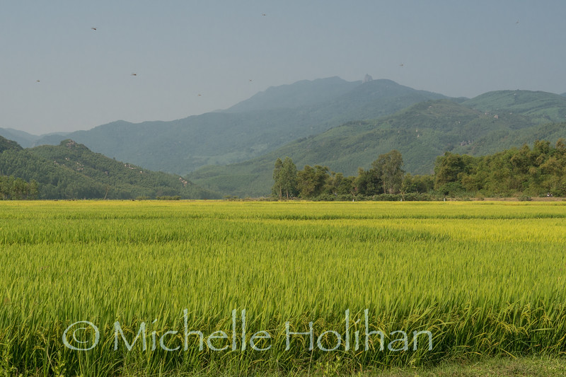 Drive from Quy Nhon to Hoi An, Vietnam