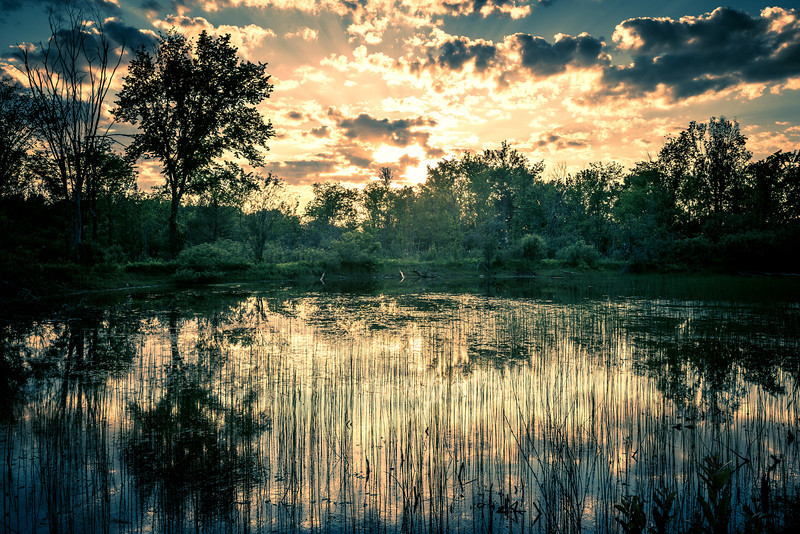 Lake R.jpg