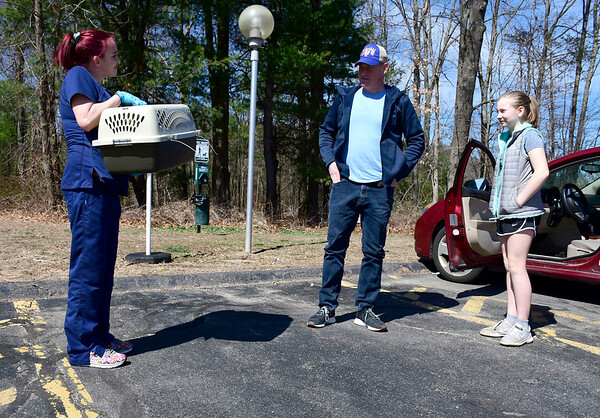3/27/2020 MIke Orazzi | Staff Chippens Hill Veterinary Hospital's Michela O'Donnell carries Collette, a cat owned by John Andros and his daughter Audrey, on a visit for veterinary services on Friday. Customers are being asked to wait in their vehicles.