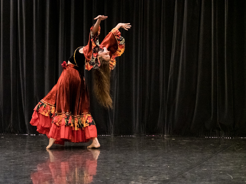 """Showing: Valentina Ryazanova - """"Plastic Dance in Russia: Classic Historical Productions and Modern Compositions"""""""
