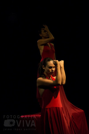 Danza-Dança-Dance
