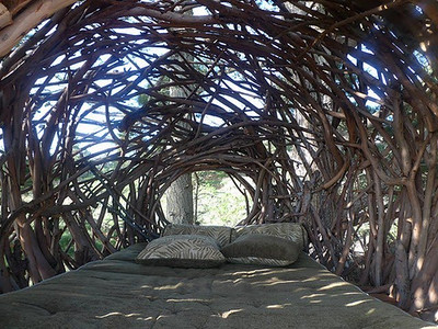 Nature materials made structures