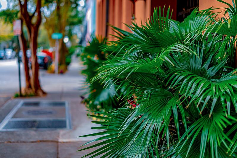 East Bay street, Charleston, South Carolina