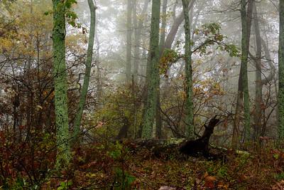 20171014 Shenandoah National Park