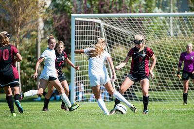 Davis v. Viewmont Girls Prep 2015