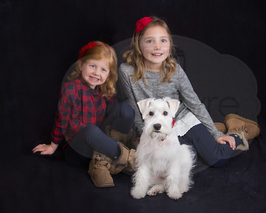 Northup Holiday Mini Session