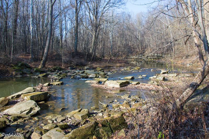 Black River 120715-1.jpg