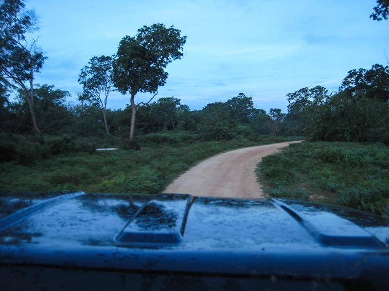 Sri_Lanka17-9533.jpg