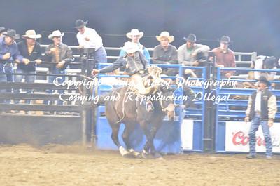 10-17-14 Saddle Bronc