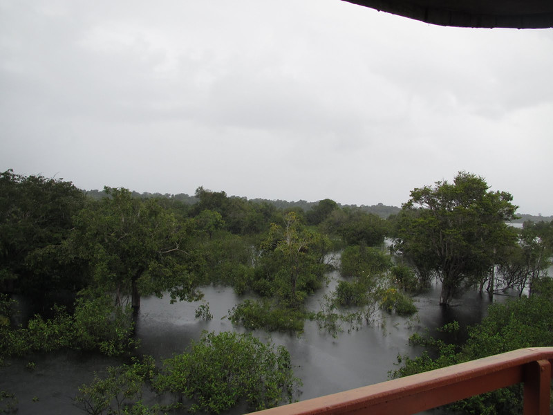 A rainy morning - notice how high the water is - about 30 feet above where it is supposed to be