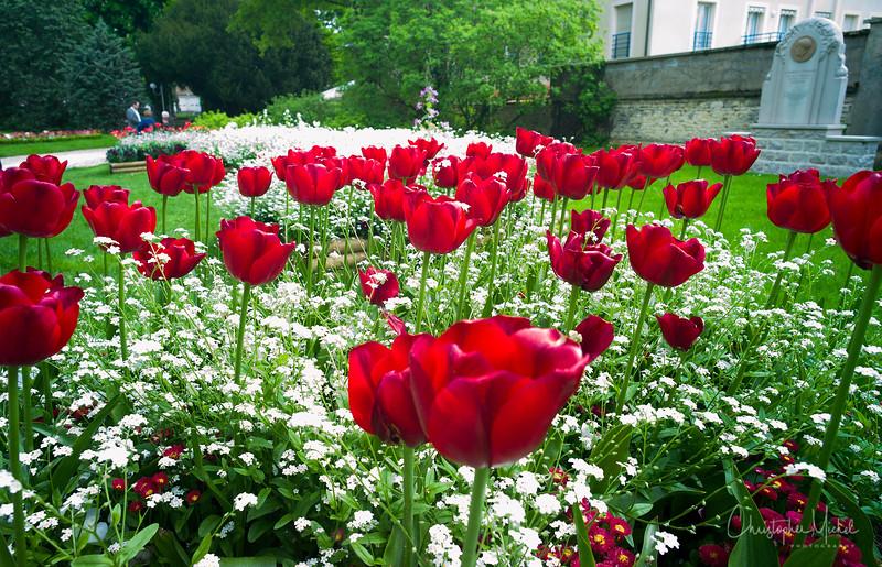 May092013_Marc Meneau L'Espérance_clos vougeot_7333.jpg