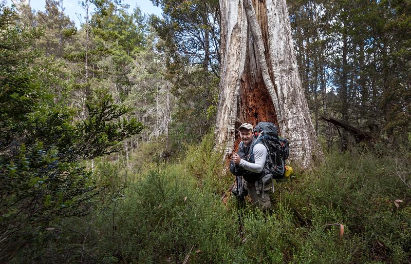 Tasmania_2015_144.jpg