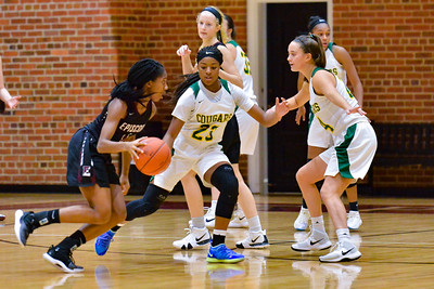 Collegiate Basketball 2018-19