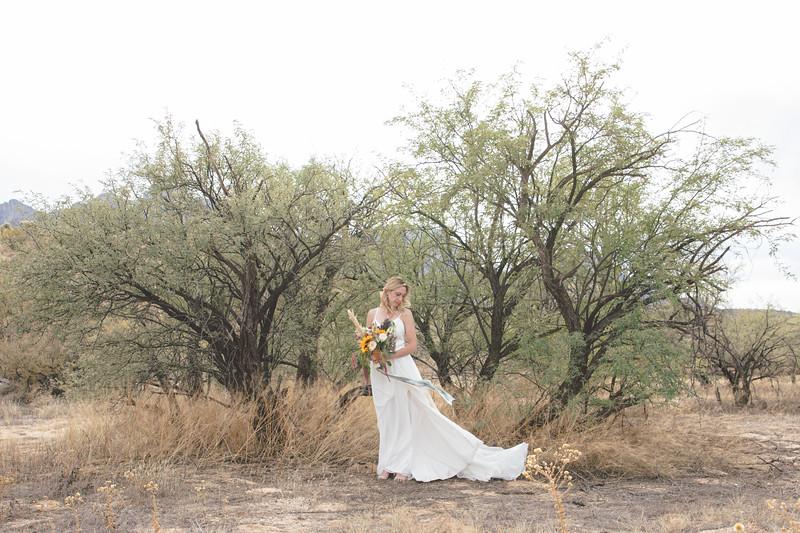 Nick and Charlotte Nelson Wedding-3394.jpg