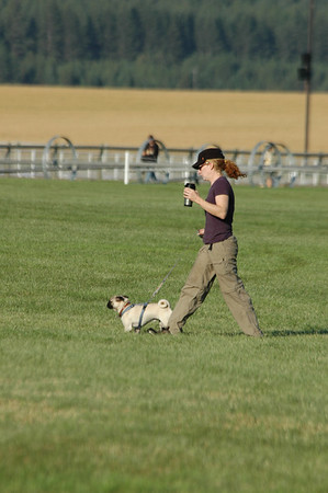 Rebecca Farm, Cross Country - July 2007