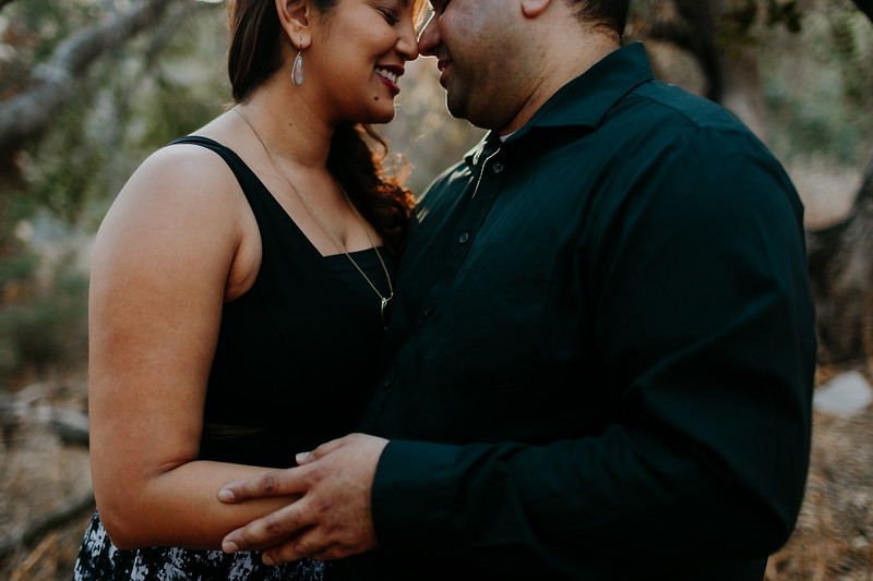 Swapna and Atul Engagement-09.jpg