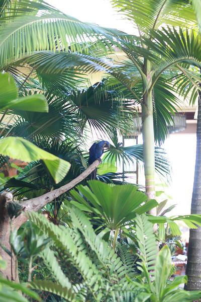 Kauai_D5_AM 219.jpg
