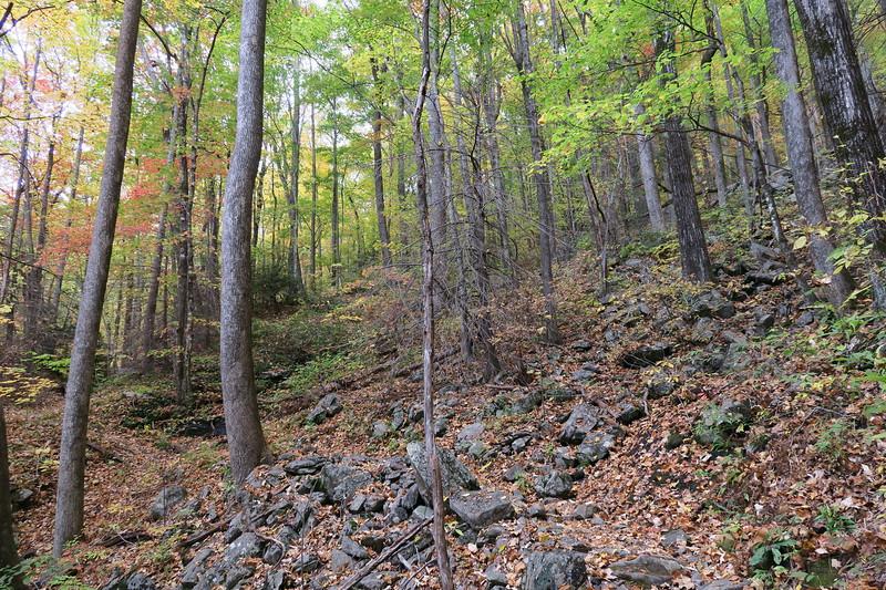 Farlow Gap Trail -- 3,700'