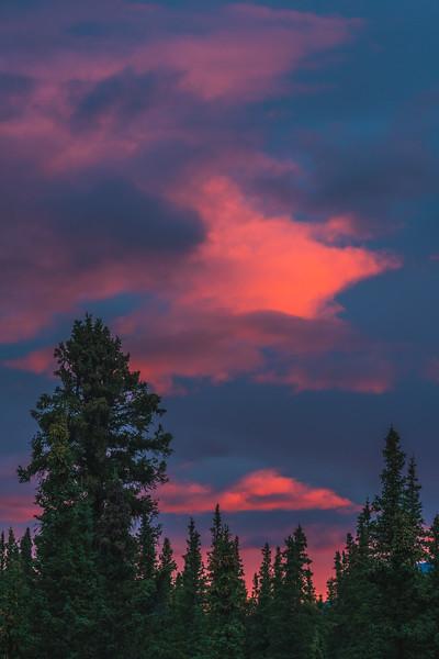 Denali National Park Backpacking - 0066.jpg