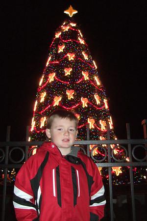 National Christmas Tree (01 Jan 2008)