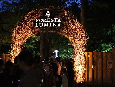 Foresta Lumina - Aout 2016
