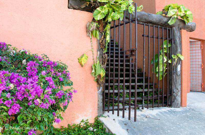 A neighbor's entrance