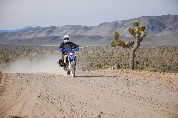 Death Valley Noob Rally, 2014