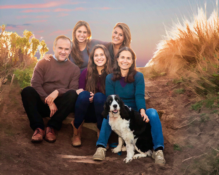 Family Portrait Galleries