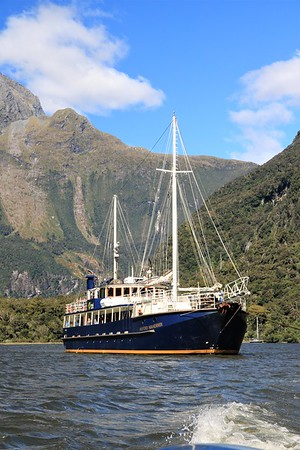 End of Trip - Milford Sound & Auckland