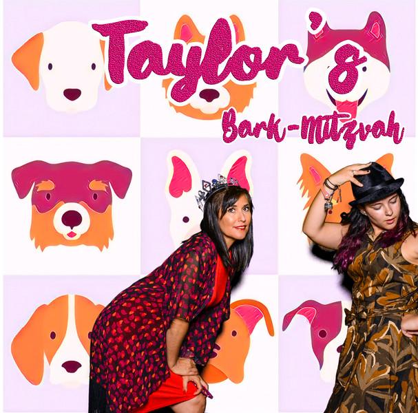 Taylors pawmitzvah-20789.jpg