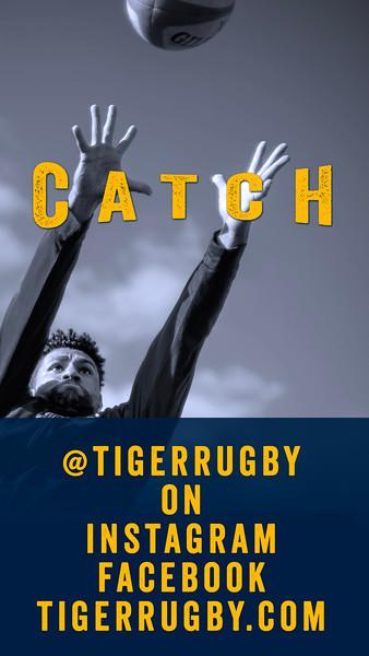 Catch Tiger05.jpg