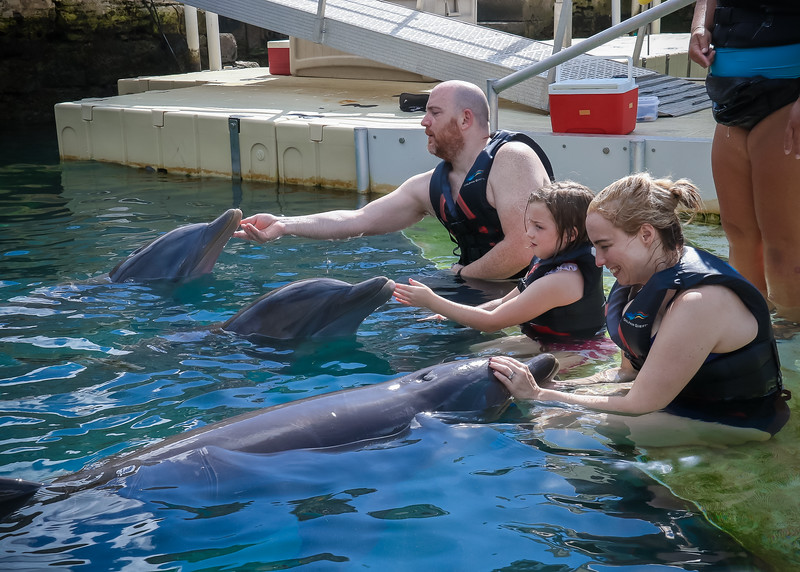 2019 August Dolphin Quest-261.jpg