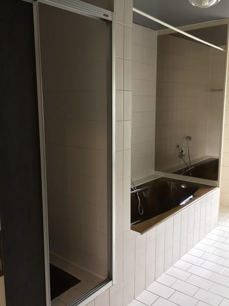 Master bath with shower and bathtub.