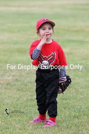 T-Ball 2015-06-02 Blue Rocks vs Owlz