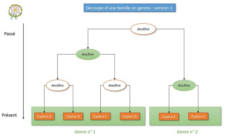 Genre 1.JPG
