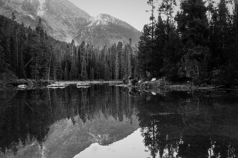 Favorite lake, GTNP