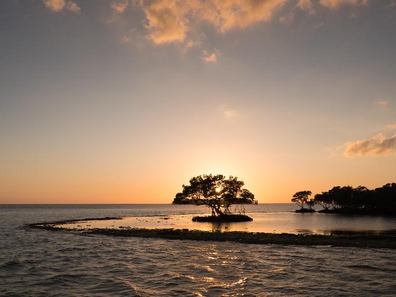 Everglades-148.jpg