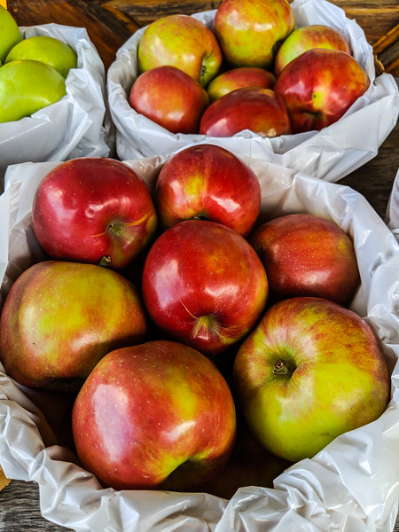 nova scotia apples-2.jpg