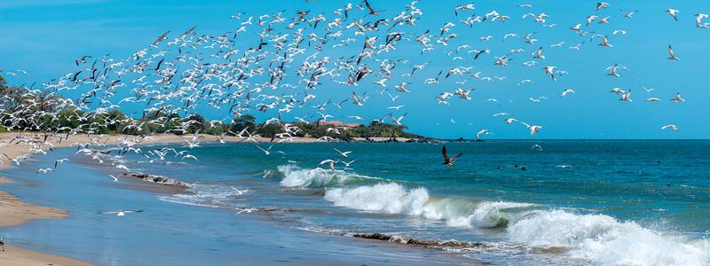 Playa La Garita