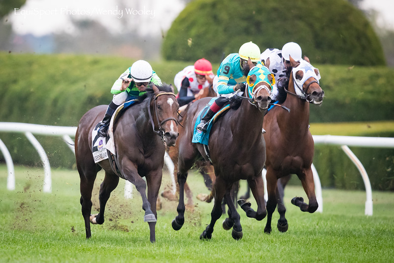 """Kimari (Munnings) wins the Indian Summer, a """"Win and You're In"""" for the Breeders' Cup Juvenile Turf Sprint Division. Mike Smith up Wesley Ward trainer, Ten Broeck Farm owner."""