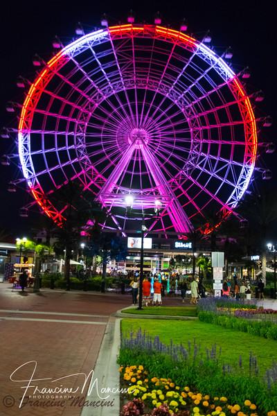 Orlando (793 of 1143).jpg