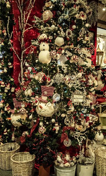 CB Christmas 19-3377.jpg