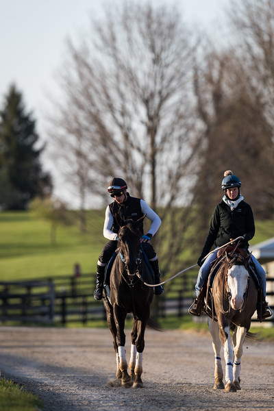 One of Rudolphe's trainees is ponied back to the barn at Keeneland 4.18.18'