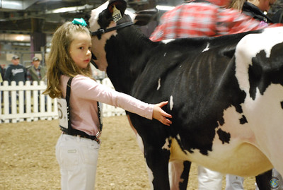 PA Spring Holstein Show 2018