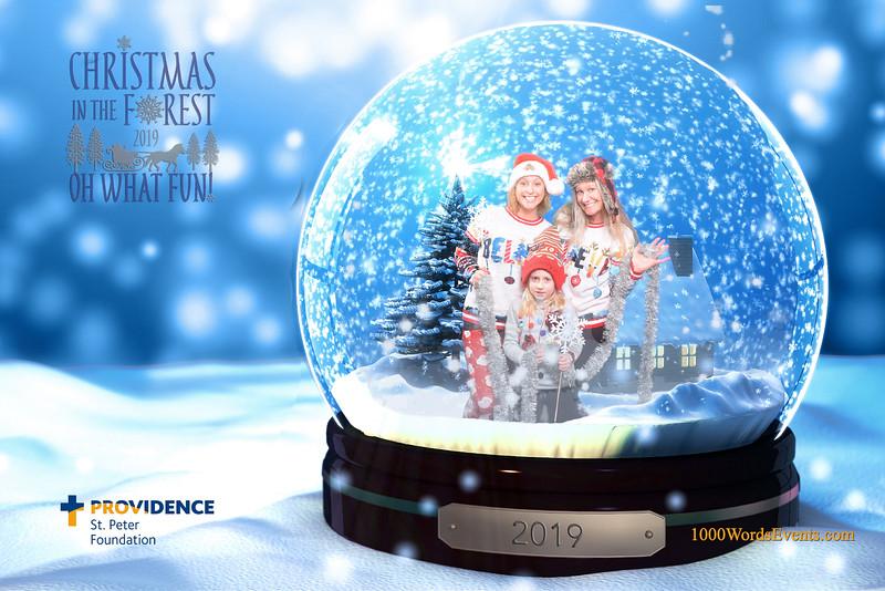 Providence Christmas Forest-110.jpg