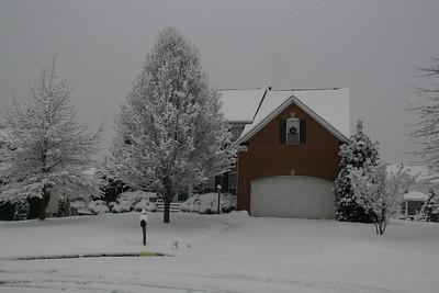 Snow - Jan 2010
